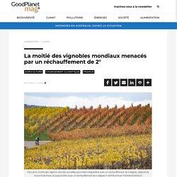 La moitié des vignobles mondiaux menacés par un réchauffement de 2° - GoodPlanet MAG'