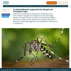 Le réchauffement augmente les dangers du moustique tigre
