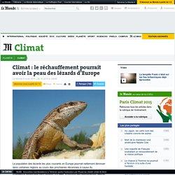 Climat: le réchauffement pourrait avoir la peau des lézards d'Europe