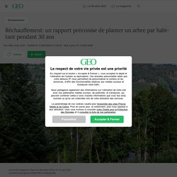 Réchauffement: un rapport préconise de planter un arbre par habitant pendant 30 ans Par GEO avec AFP - Publié le 17/09/2020 à 11h16 - Mis à jour le 17/09/2020