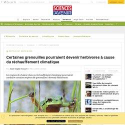 Certaines grenouilles pourraient devenir herbivores à cause du réchauffement climatique - Sciencesetavenir.fr