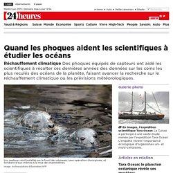 Réchauffement climatique: Quand les phoques aident les scientifiques à étudier les océans -
