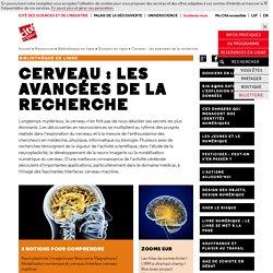 Cerveau : les avancées de la recherche - Dossiers documentaires