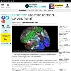 Recherche. Une carte inédite du cerveau humain