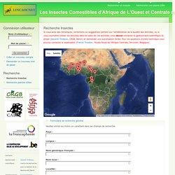 Les Insectes Comestibles d'Afrique de L'Ouest et Centrale sur Internet
