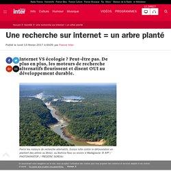 Une recherche sur internet = un arbre planté