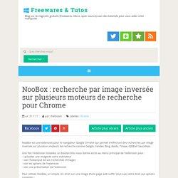 recherche par image inversée sur plusieurs moteurs de recherche pour Chrome