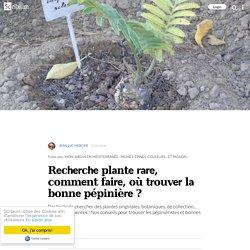Recherche plante rare, comment faire, où trouver la bonne pépinière ?