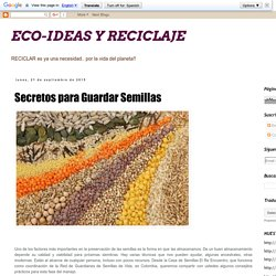 ECO-IDEAS Y RECICLAJE : Secretos para Guardar Semillas