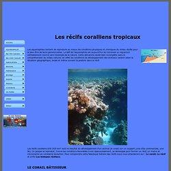 Recifs coralliens
