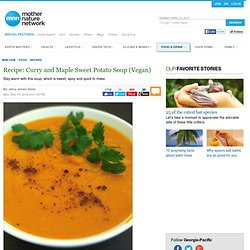 Curry and Maple Sweet Potato Soup (Vegan)