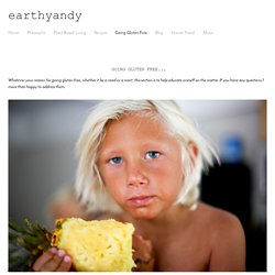 Easy Gluten Free Recipes with flavor and nutrients — earthyandy