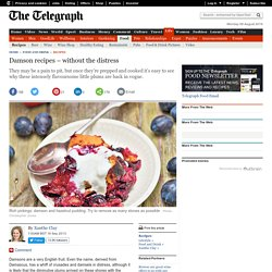 Damson recipes – without the distress