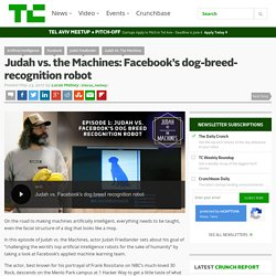 IA : Judah vs. the Machines: Facebook's dog-breed-recognition robot