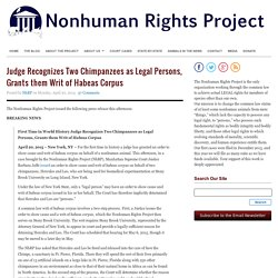 Judge Recognizes Two Chimpanzees as Legal Persons, Grants them Writ of Habeas Corpus : The Nonhuman Rights Project