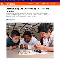Recognizing and Overcoming False Growth Mindset