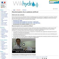 Recolonisation d'un substrat artificiel