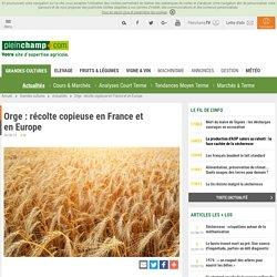 PLEINCHAMP 06/08/19 Orge : récolte copieuse en France et en Europe
