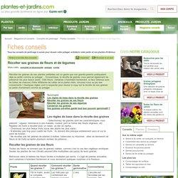 Récolter ses graines de fleurs et de légumes