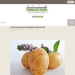 Le Secret pour des récoltes énormes de pommes de terre