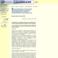 CSTI - Avis et recommandations : rapport du groupe B annexé à l'avis du 26 juin 2003 sur certains aspects du droit numérique