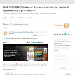 BLOG E-COMMERCE de François Ziserman, e-commerce et moteur de recommandations personnalisées