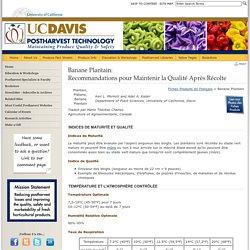 UNIVERSITY OF CALIFORNIA - Banane Plantain: Recommandations pour Maintenir la Qualité Après Récolte