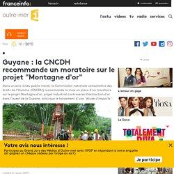 """Guyane : la CNCDH recommande un moratoire sur le projet """"Montagne d'or"""""""