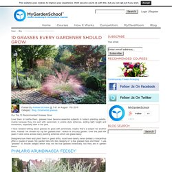 Top 10 Recommended Grasses Grow