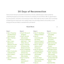 30 Days of Reconnection – Biomimicry Institute
