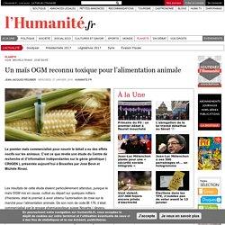 Un maïs OGM reconnu toxique pour l'alimentation animale