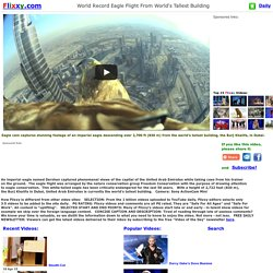 World Record Eagle Flight From World's Tallest Building
