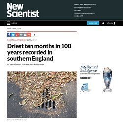 Driest ten months in 100 years recorded in southern England