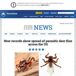 PENN STATE NEWS 30/05/19 New records show spread of parasitic deer flies across the US