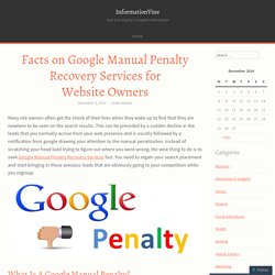Facts on Google Manual Penalty Recovery Services for Website Owners