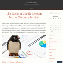 The Basics of Google Penguin Penalty Recovery Services
