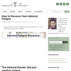 Adrenal Fatigue Recovery: Diet, Lifestyle and Supplements