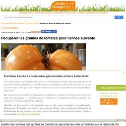 Récupérer les graines de tomates et les conserver