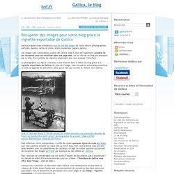 Récupérer des images pour votre blog grâce la vignette exportable de Gallica - gallica