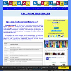 ¿Qué son los Recursos Naturales? Definición, tipos y más