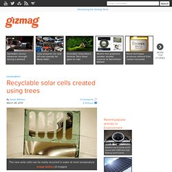 Recyclable solar cells created using trees