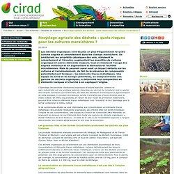 CIRAD - FEV 2014 - Recyclage agricole des déchets : quels risques pour les cultures maraîchères ?