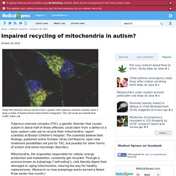 Impaired recycling of mitochondria in autism?