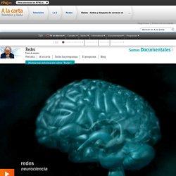 Antes e despois de coñecer o cerebro, Redes