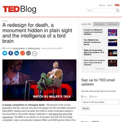 A redesign for death, a monument hidden in plain sight and the intelligence of a bird brain