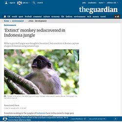 'Extinct' monkey rediscovered in Indonesia jungle | Environment