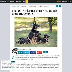 Redonnez vie à votre chien pour 100 000$ grâce au clonage !