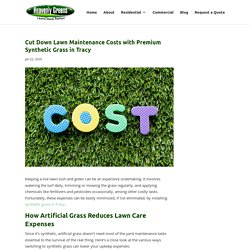 Reduce Lawn Care Costs with Synthetic Grass in Tracy