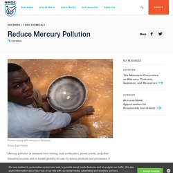 Reducing Mercury Pollution