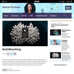 Reef Bleaching - Classroom - BTN